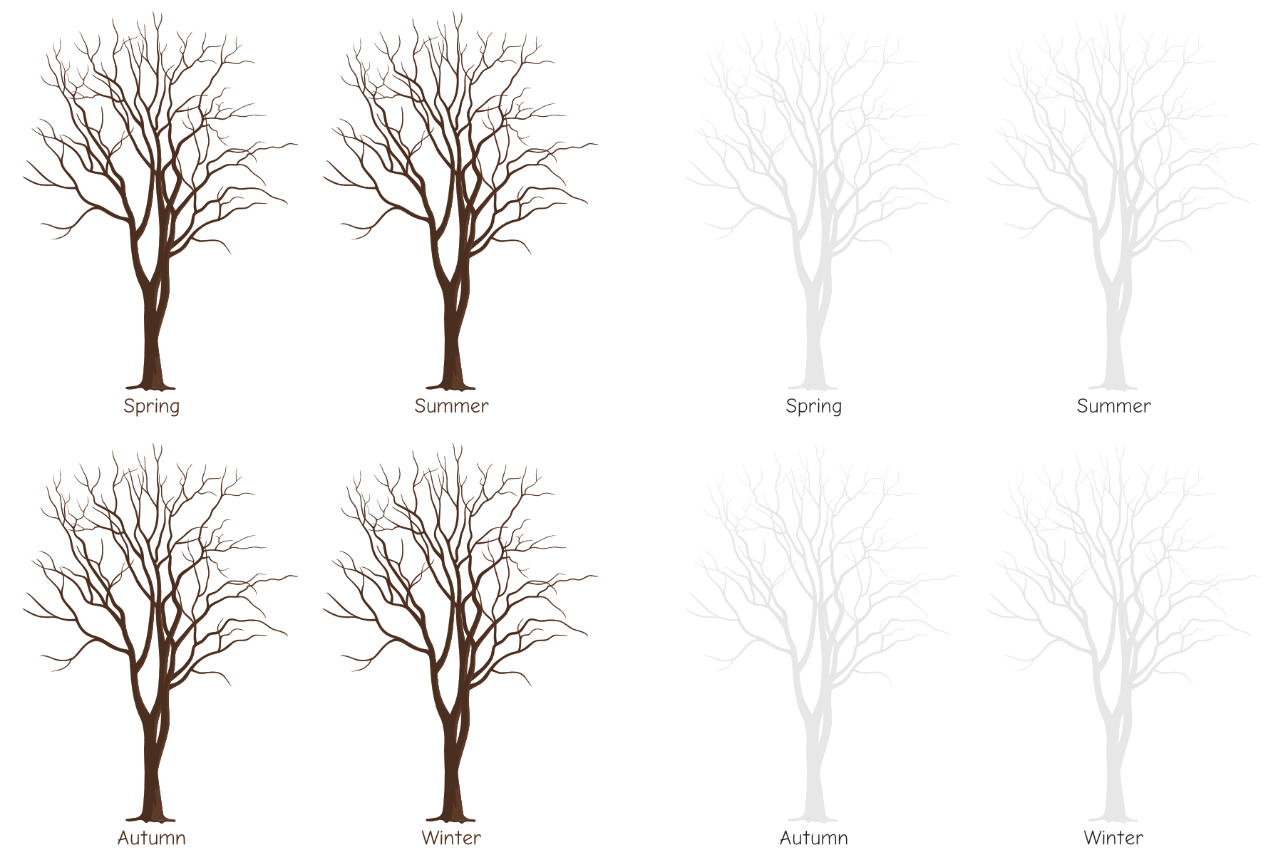 realistic tree template for drawing the four seasons: spring summer autumn winter